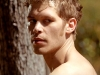 joseph morgan as klaus on the vampire diaries