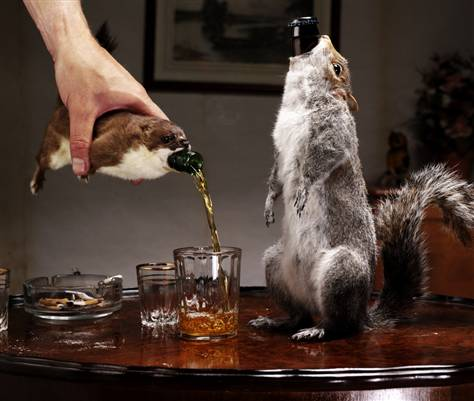 Er, make mine a double squirrel please