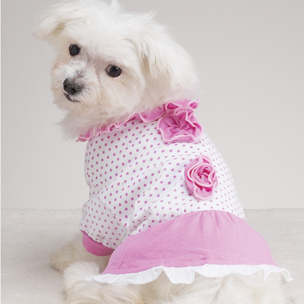 dog Baby Doll Dress