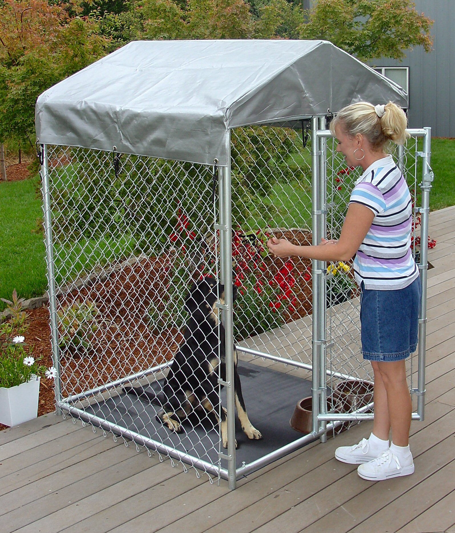 Choosing a dog kennel for What is dog boarding
