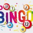 bingo-website--465x262